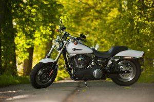 Black and White Harley Davidson Bike on Road