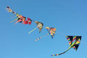 Kite Row in Sky During Makar Sankranti Festival HD