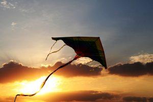 Makar Sankranti Kite During Sunset