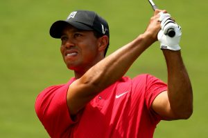 Tiger Woods Golf Player HD
