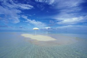 Tropical Oasis HD Wallpaper For Free