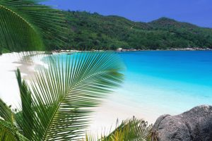 Tropical Retreat Beach HD Wallpaper For Free