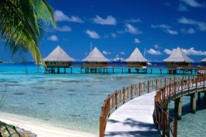 Walkway To Paradise Beach HD Wallpaper For Free