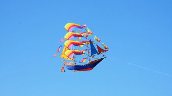 Beautiful Kite in Sky During Makar Sankranti Festival