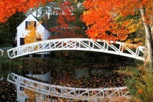 Beautiful Small Bridge on River