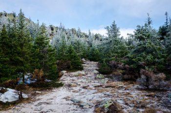 Christmas Hill