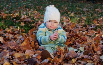 Cute Baby Boy Playing Between Dry Leaf HD