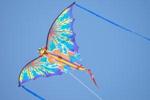 Kite in Sky Photo Background