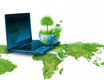 Laptop Green Plant