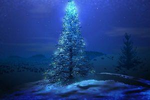 Night Christmas Tree Shine