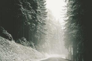 Road Silent