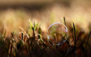 3D Bubble in Grass Wallpaper