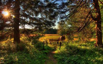 Beautiful Nature Photo of Sunrising