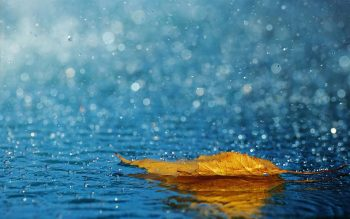 Beautiful Wallpaper of Rain