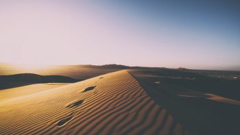 Desert Sand Dunes Photo