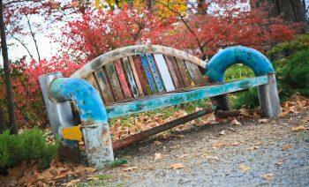 Nice Colorful Bench in Garden Photos