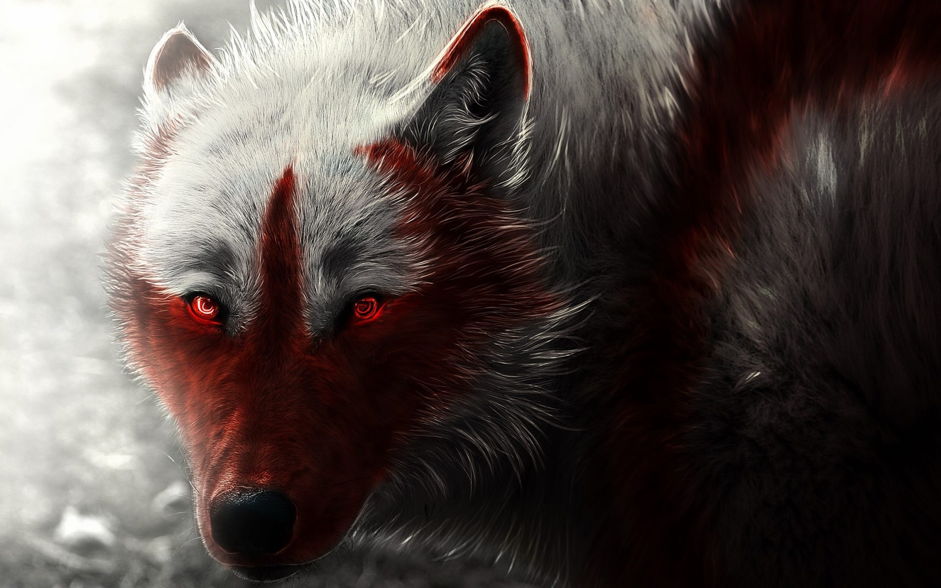 Scary Wolf HD Image - Download hd ...