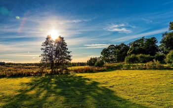 Sun and Nature View Photography