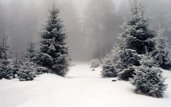 Super HD Wallpaper of Winter Season