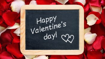 Happy Valentines Day Rose Petals