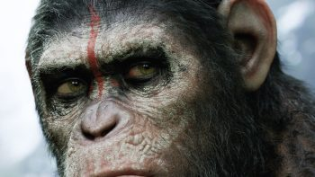 Dawn Of The Planet Of The Apes HD Wallpaper Download For Android Mobile