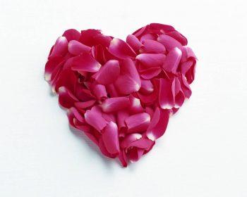 Heart Shaped Rose Leaves