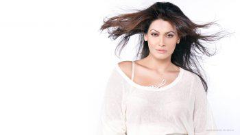 Payal Rohatgi Bollywood HD Wallpaper Download Wallpaper