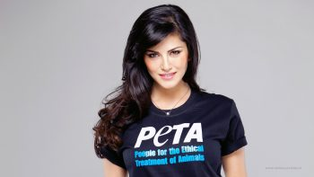 Sunny Leone Peta HD Wallpaper Download Wallpaper
