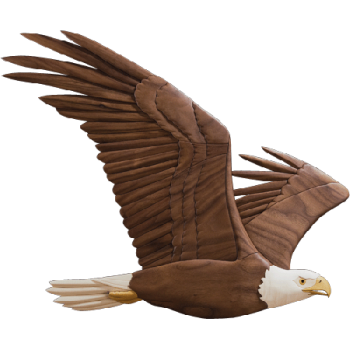 Animated  Soaring Eagle Transparent  PNG Image HD Wallpapers Download For Android Mobile