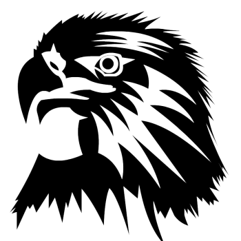 Eagle Head  PNG Image HD Wallpapers Download For Android Mobile