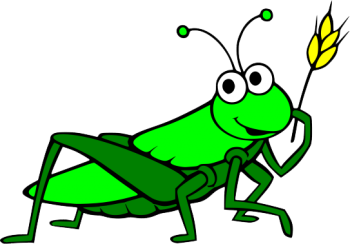 Happy   Grasshopper PNG image HD Wallpapers Download For Android Mobile