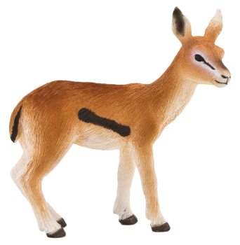 Baby  Gazelle Transparent Background PNG Image HD Wallpapers Download For Android Mobile