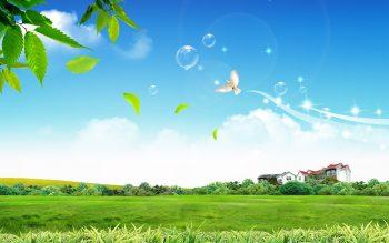 Peaceful Life Download Full HD Wallpaper