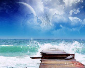 Sea Dreamy World