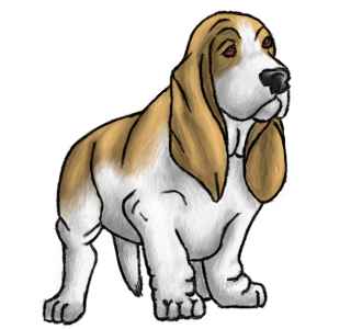 Basset Hound Transparent HD Wallpaper Download For Android Mobile