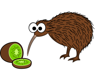 Kiwi Bird PNG Clipart image HD Wallpaper Download For Android Mobile Wallpapers HD For I Phone Six Free Download