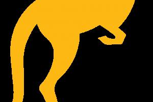 Kangaroo PNG Image   Yellow Kangaroo HD Wallpaper Download For Android Mobile   Wallpaper HD For I Phone Six Free