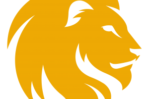 Lion Head Transparent Photo   Yellow Head 3D HD Wallpaper   HD Wallpaper Download For Android Mobile