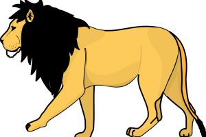 Animated Lion PNG Image | 3D HD Wallpaper | HD Wallpaper Download For Android Mobile