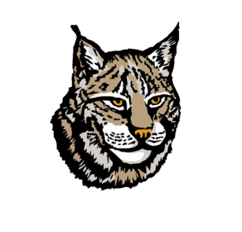 Lynx PNG HD Wallpaper Download For Android Mobile