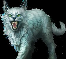 Lynx PNG Transparent Full HD Wallpaper Download