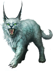 Lynx PNG Transparent Full HD Wallpaper Download