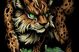 Lynx Transparent Full HD Wallpaper Download