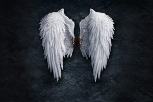 Angels Wings Blood Stones Aion Neat Image For Free