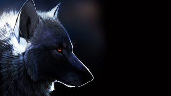 Animals Wolf Art