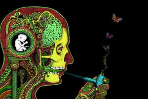 Art Dark Skull Psychedelic Butterfly Mood Marijuana Anatomy