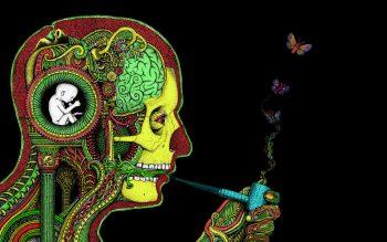 Art Dark Skull Psychedelic Butterfly Mood Marijuana Anatomy