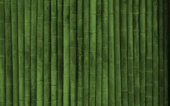 Bamboo Textures High Resolution iPhone Photograph
