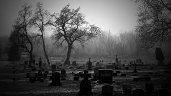 Cemetery Bw Tombstones Trees Green Image Idea
