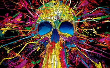 Colourful Skull Get Neat Photograph For Free